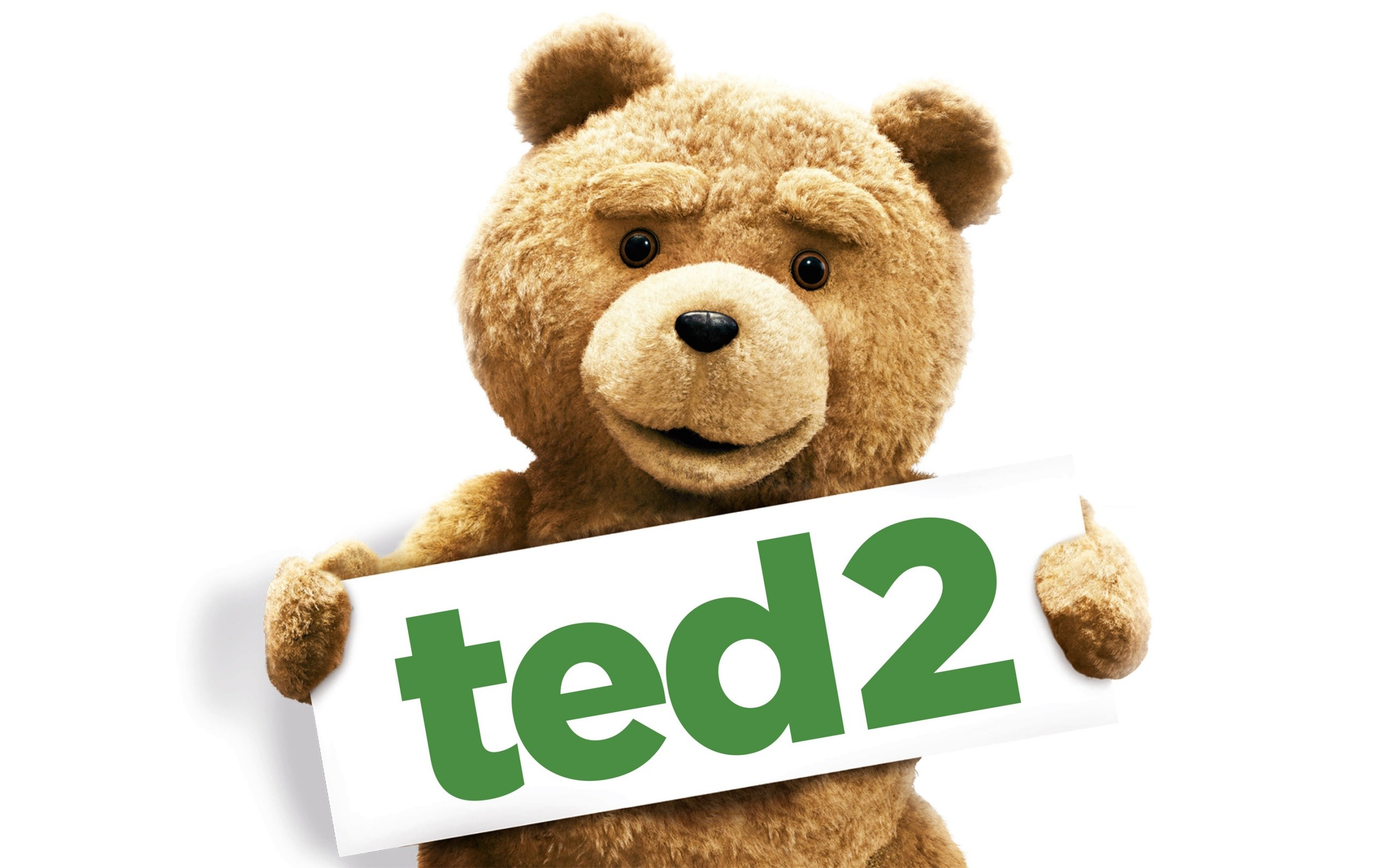 2015 Ted 2 Movie Wide