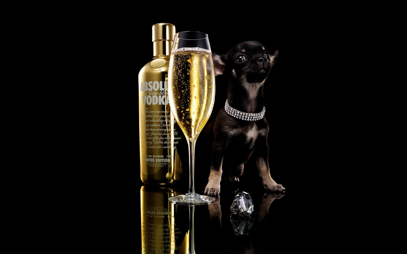 Absolute Vodka Bling Bling Dog And Diamond Wide
