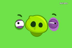 Angry Birds – Green Wide