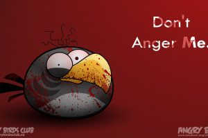Angy Birds – Dont Anger Me