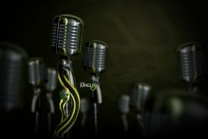 Audio Jungle Snake On Microphone Wide