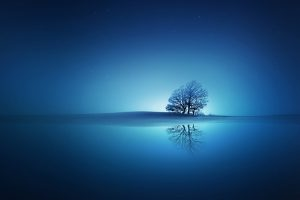 Blue Reflections Wide