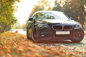 Bmw Among The Leaves-Other