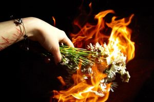 Burning Flowers-Other