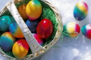 Colored Eggs-Other