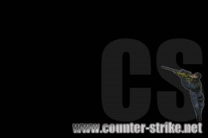 Counter Strike 102-Other