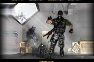 Counter Strike 117