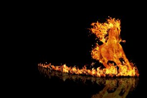 Fire Horse Isolated Black Background