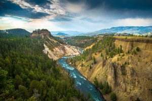Grand Canyon Of The Yellowstone Wide