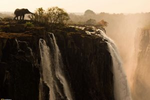 Great Waterfall Elephant View