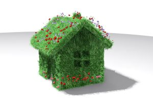 Green Grass House With Flowers Wide
