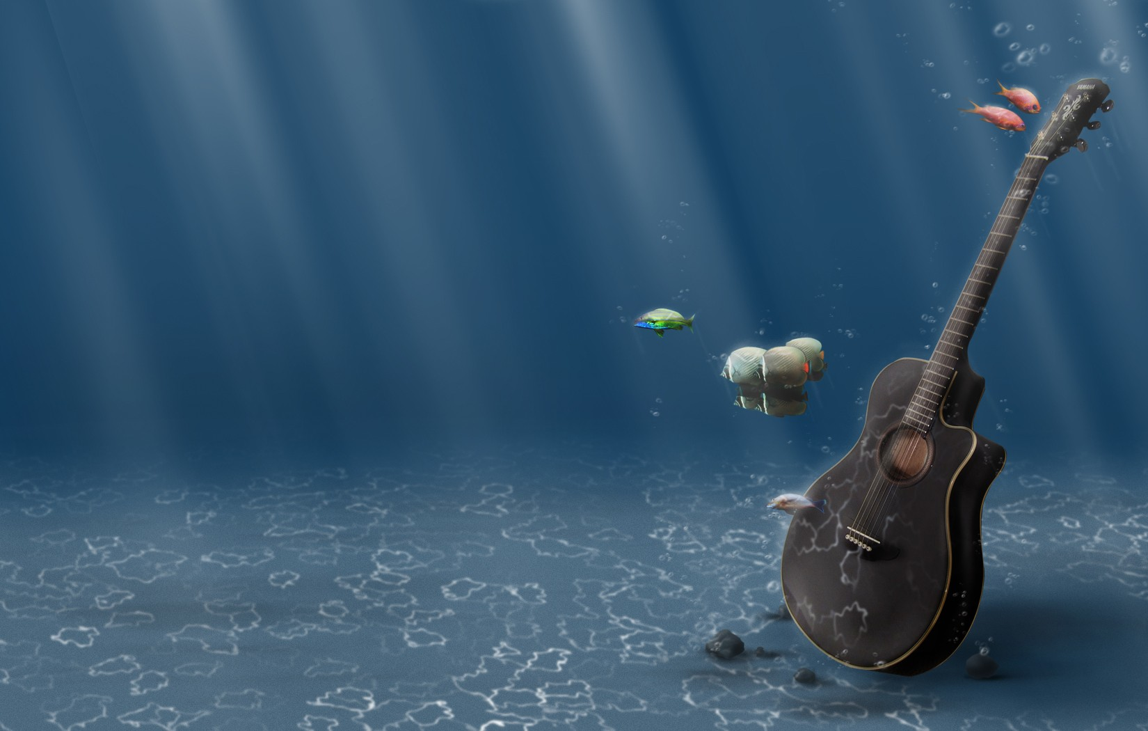 Guitar Under The Sea Other