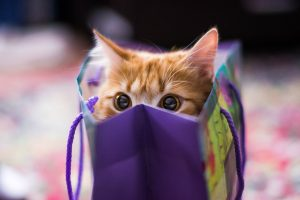 Its My Bag-Other