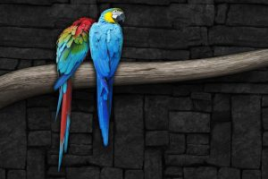 Parrots On A Branch Wide