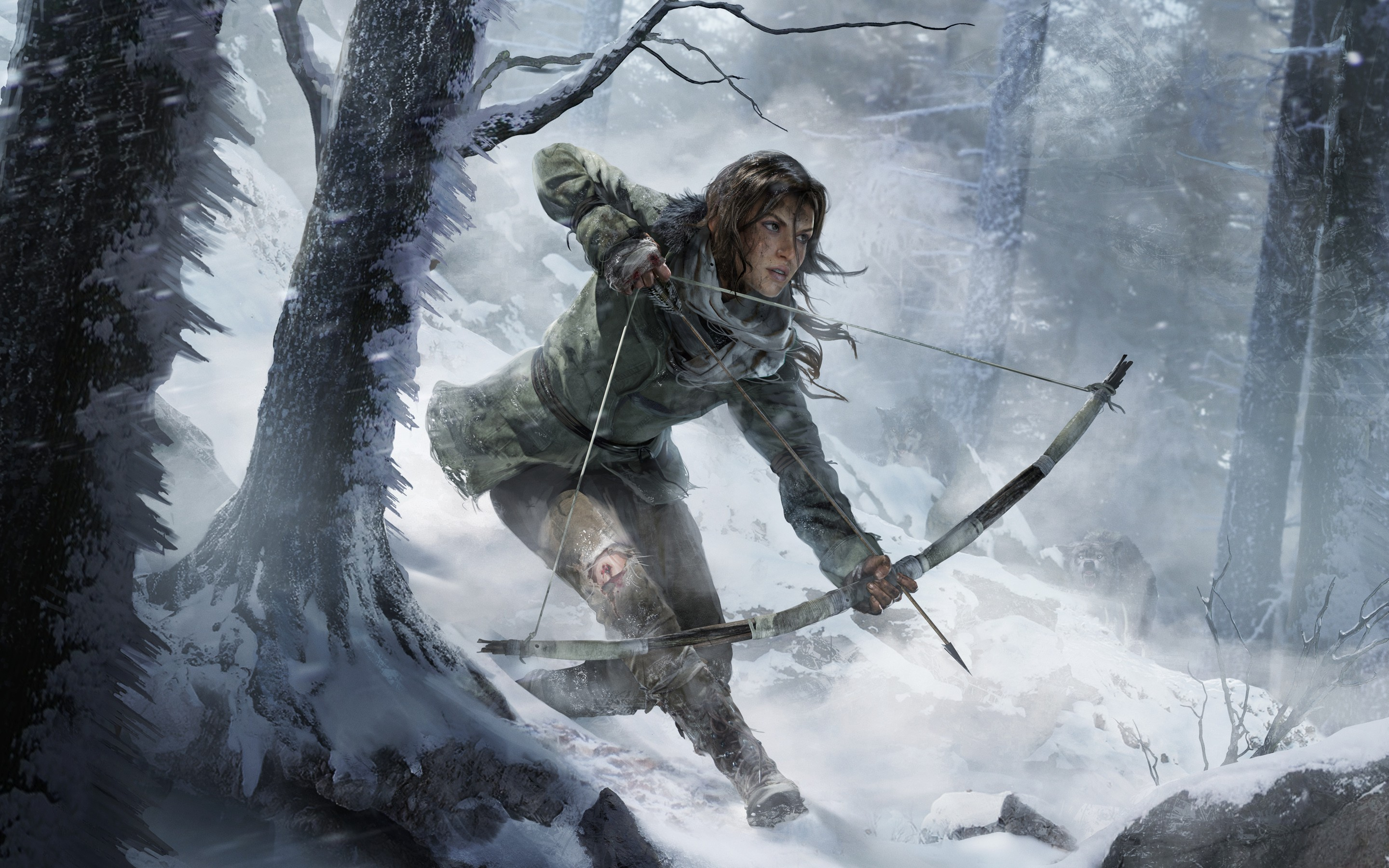 Rise Of The Tomb Raider 2015 Wide