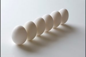 Six Eggs In Line-Other