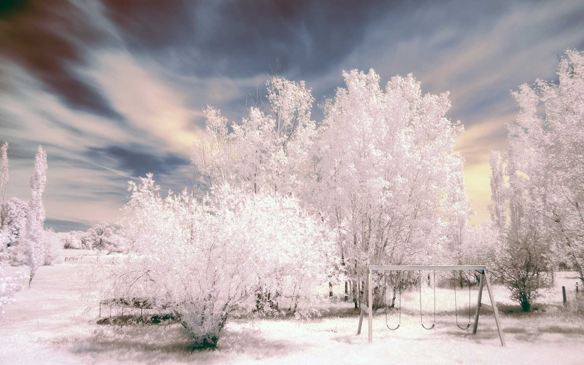 So Beautiful Nature In Negative Wide