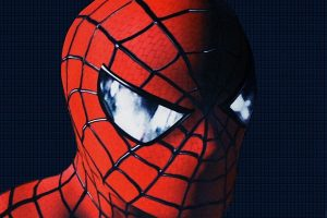 Spider Man Closer Look