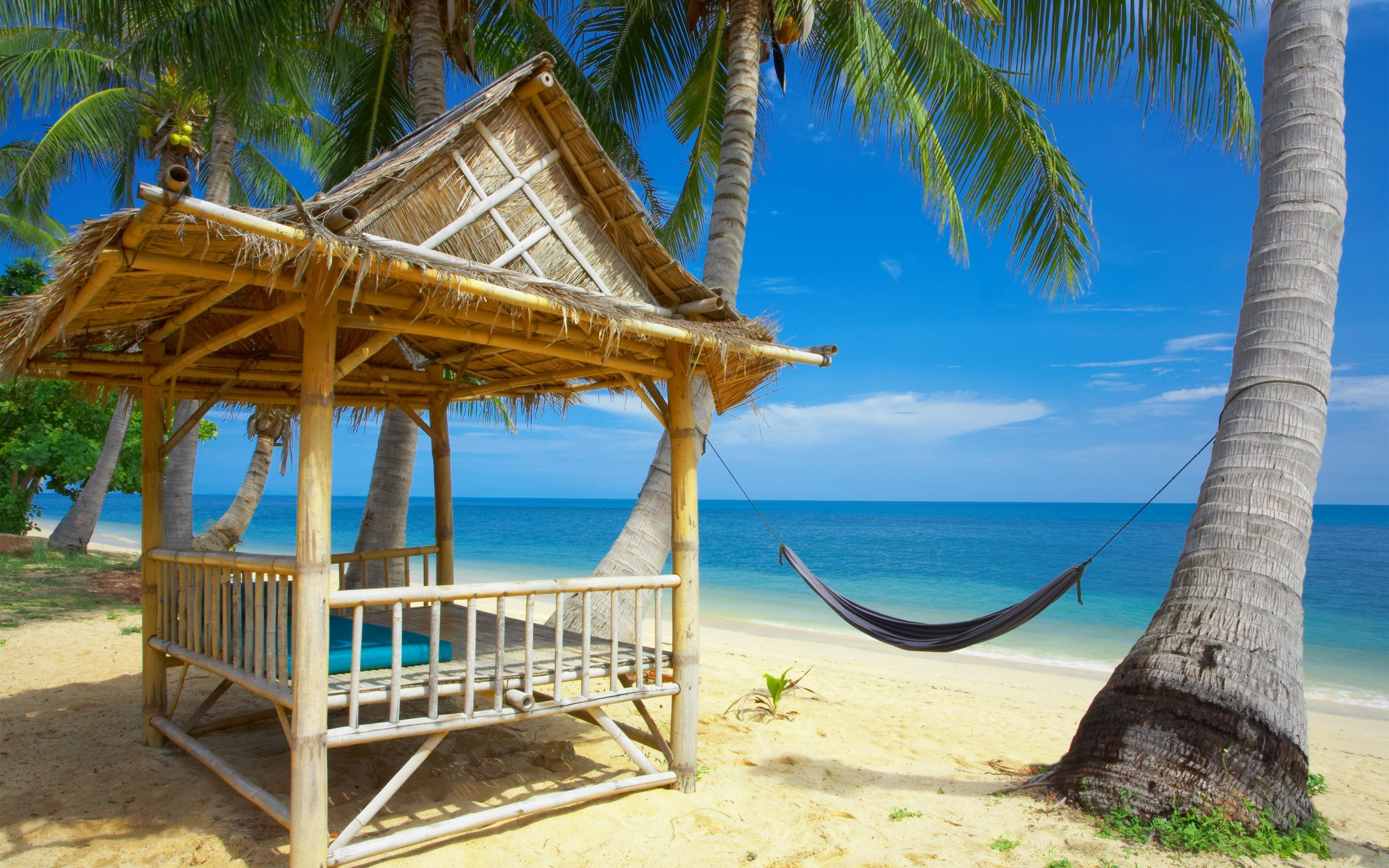 Summers Great Rest Place Near Sea Wide 1