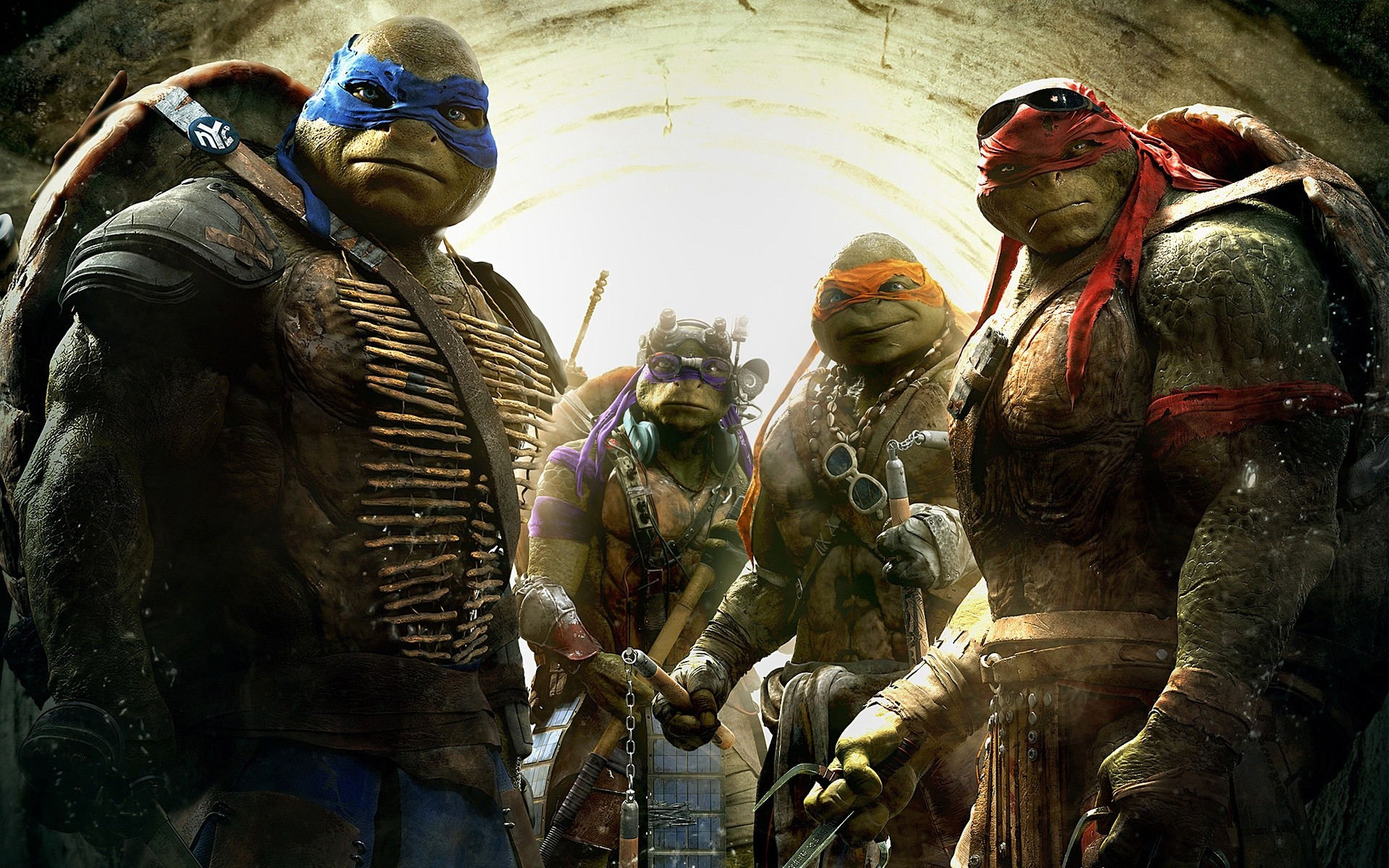 Teenage Mutant Ninja Turtles 2014 Wide