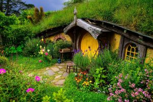 The Humble Home Of Hobbits Wide