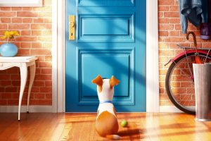 The Secret Life Of Pets Movie Wide