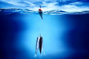 Three Fishs One Hook Into Blue Water Wide