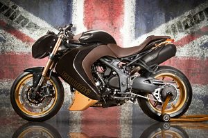 Vilner Triumph Speed Triple Bulldog Wide