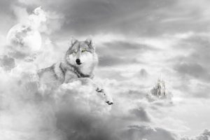 Wolfs Castle In The Clouds