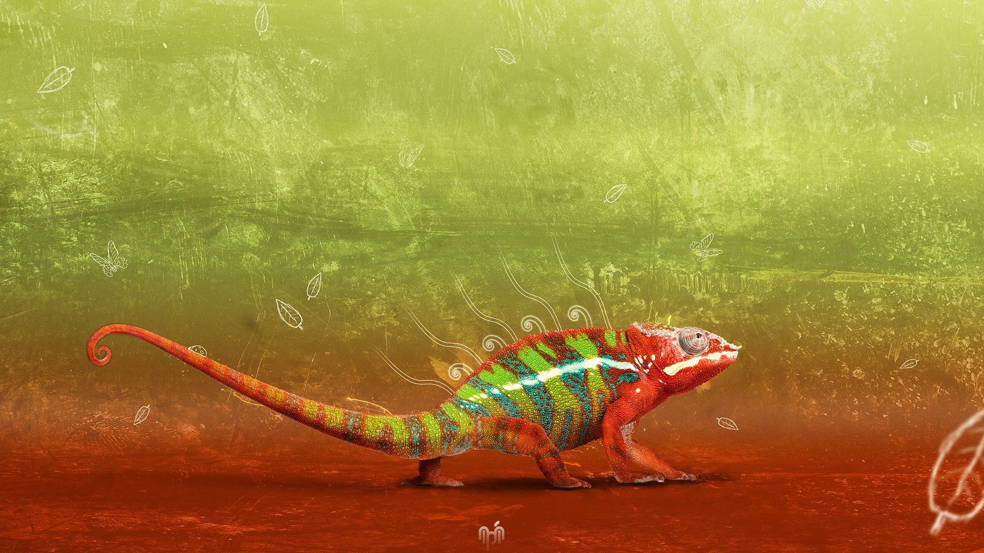cool abstract chameleon HD